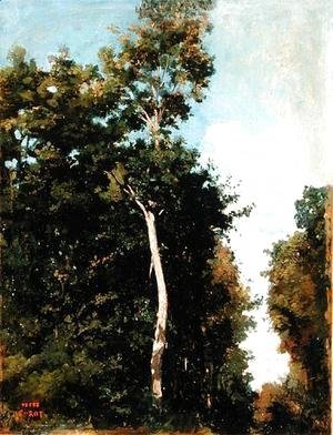 Jean-Baptiste-Camille Corot - The Wood on the Cote de Grace in Honfleur