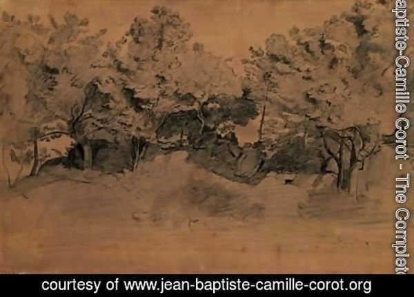 Landscape of Royat, study of trees